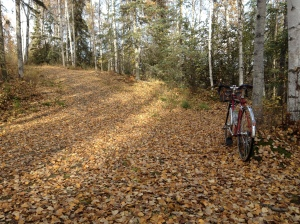 Eagle River Multi-Use trails