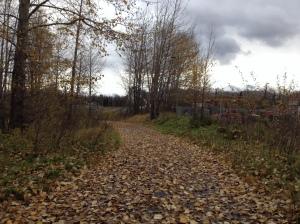 Ship Creek Trail